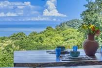 Homes for Sale in Escaleras , Dominical, Puntarenas $689,000