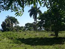 Lots and Land for Sale in Cabrera, Maria Trinidad Sanchez $124,500