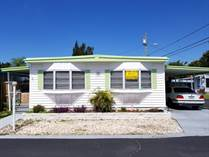Homes for Sale in Kakusha, Clearwater, Florida $23,890