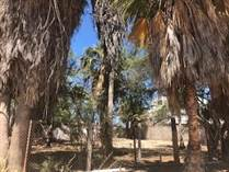 Homes for Sale in El Mirador, Puerto Penasco/Rocky Point, Sonora $130,000