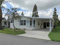Homes for Sale in Lake Pointe Village, Mulberry, Florida $34,000