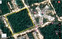 Homes for Sale in Tulum, Quintana Roo $4,500