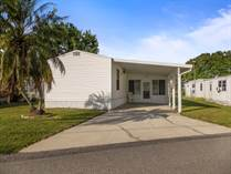 Homes for Sale in Fish Haven Lodge, Auburndale, Florida $14,900