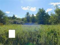Lots and Land for Sale in Dorset, Ohio $18,500