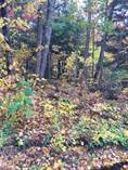 Lots and Land for Sale in Humphrey, Ontario $79,000