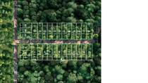 Lots and Land for Sale in holistika, Tulum, Quintana Roo $119,496