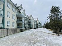 Condos for Sale in The Peaks Willow Building, Radium Hot Springs, British Columbia $259,900