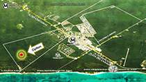 Lots and Land for Sale in Region 8, Tulum, Quintana Roo $250,000