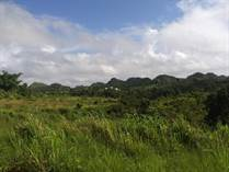 Lots and Land for Sale in Caguana, Utuado, Puerto Rico $550,000