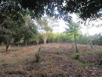 Lots and Land for Sale in Lo De Marcos, Nayarit $69,200