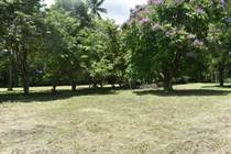Lots and Land for Sale in Golfito, Puntarenas $225,000