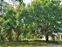 Lots and Land for Sale in Palm Coast, Florida $29,900