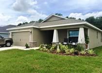 Homes for Sale in Zephyrhills, Florida $247,000