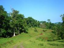 Lots and Land for Sale in Palmar Norte, Sierpe, Puntarenas $1,570,000