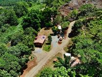 Commercial Real Estate for Sale in Savegre , Quepos, Puntarenas $899,000