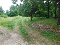 Lots and Land for Sale in Cobden, Illinois $79,900