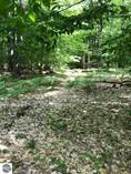Lots and Land for Sale in Green Lake Township, Interlochen, Michigan $59,900