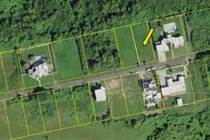 Homes for Sale in Bejucos, Isabela, Puerto Rico $55,000