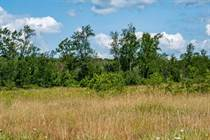 Lots and Land for Sale in Wiarton, Ontario $519,000