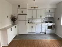 Condos for Sale in Sunset Park, New York City, New York $369,000