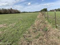 Lots and Land for Sale in Lake Butler, Florida $165,000