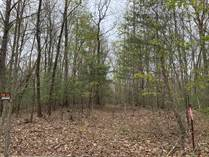 Lots and Land for Sale in Jamestown, Tennessee $129,900