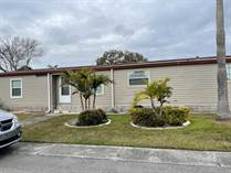 Homes for Sale in Three Lakes Mobile Home Park, Tampa, Florida $73,900