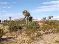 Lots and Land for Sale in Yucca Valley, California $19,900
