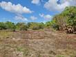 Lots and Land for Sale in Burrel Boom , Belize $15,000