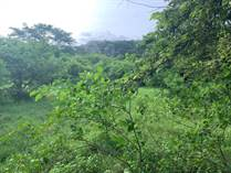 Homes for Sale in Playas Del Coco, Guanacaste $39,000