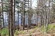 Lots and Land for Sale in Pleasant River, Nova Scotia $69,000