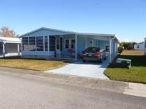 Homes for Sale in Forest Lake Estates, Zephyrhills, Florida $39,500