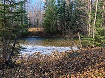 Homes Sold in Valemount, British Columbia $275,000