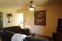Condos for Rent/Lease in Laguna Vista, San Jose del Cabo, Baja California Sur $115 daily