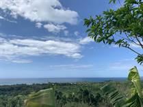 Lots and Land for Sale in Rio San Juan, Maria Trinidad Sanchez $449,900