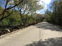 Homes for Sale in Golf Course, Puerto Aventuras, Quintana Roo $98,000
