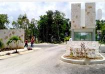 Homes for Sale in Rivera Tulum , Tulum, Quintana Roo $45,000