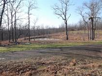 Lots and Land for Sale in Saltillo, Conway, Arkansas $39,900