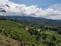 Farms and Acreages for Sale in Grecia, Alajuela $1,200,000