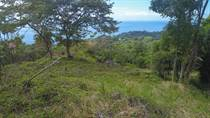 Lots and Land for Sale in Dominical, Puntarenas $209,000