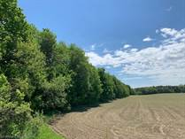 Lots and Land for Sale in Tiny, Ontario $199,900