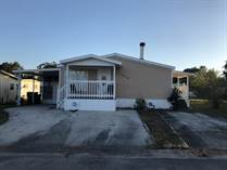 Homes for Sale in Carefree Village, Tampa, Florida $83,000