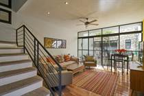Homes for Sale in San Antonio, San Miguel de Allende, Guanajuato $425,000