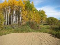 Lots and Land for Sale in Franchere, Alberta $52,000