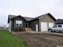 Homes for Sale in Carlyle, Saskatchewan $419,000