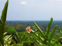Lots and Land for Sale in Quepos, Puntarenas $250,000