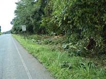 Farms and Acreages for Sale in Cortez, Puntarenas $75,000