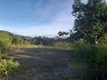 Homes for Sale in Rio Jueyes, Coamo, Puerto Rico $160,000