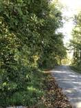 Lots and Land for Sale in Russell Springs, Kentucky $12,500