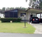 Homes for Sale in Pine Ridge Estates, Lakeland, Florida $26,500